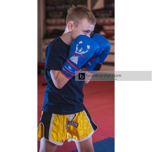 Боксерские перчатки Yakimasport Shark, 100343